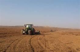 Rayonda  payızlıq taxıl əkini sahələri 37 min 850 hektarı keçib